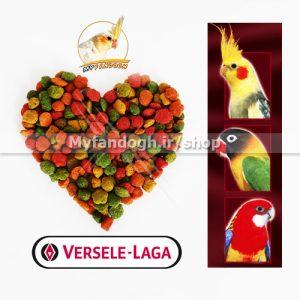 پلت میوه ای طوطی سانان کوچک و متوسط جثه ورسلاگا سایز درشت