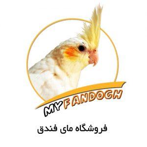myfandogh-pic