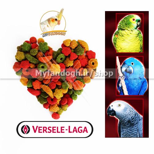 پلت میوه ای طوطی سانان متوسط و بزرگ جثه ورسلاگا
