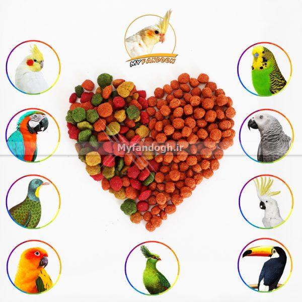 پلت ترکیبی بر پایه میوه و بر پایه دان