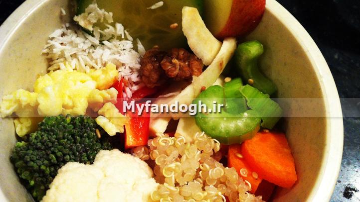 کینوا در غذای طوطی
