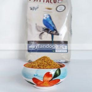 خوراک روزانه طوطی سانان میکرو سیتاکوس