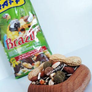 خوراک آجیلی کاسکو و طوطی سانان بزرگ جثه راف RAFF Brazil